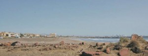 Playa para Perros en El Puig