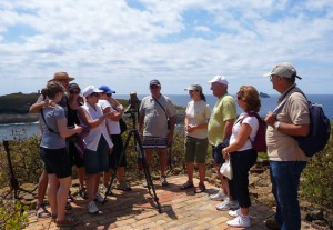 visita-isla-grossa-islas-columbretes