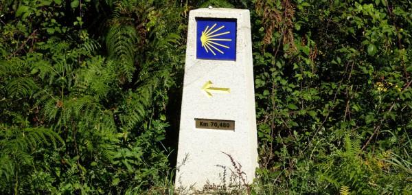 etapas-camino-santiago-el-camino-de-santiago-de-compostela