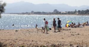 Playa-para-perros-en-Cambrils-Tarragona-Riera-Alforja