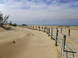 playas-que-admiten-mascotas-playa-de-riumar