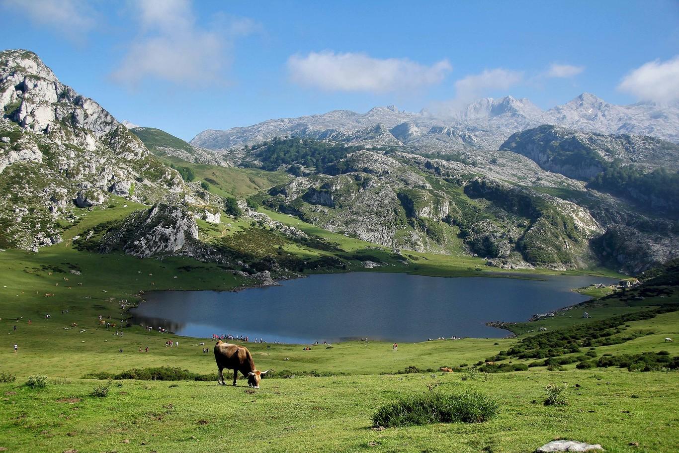 Fotografía del Parque Nacional de los Picos de Europa, Cantabria