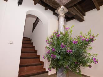 Recepción España Andalucía Granada Granada Nahira Suites 3000