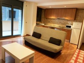 salon_3-apartamentos-canillo-3000canillo-estacion-grandvalira.jpg