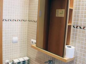 Baño-Apartamentos-Arans-3000-ARANS-Estación-Vallnord.jpg