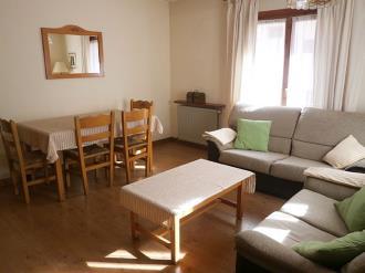 salon-comedor_1-apartamentos-sallent-de-gallego-3000sallent-de-gallego-pirineo-aragones.jpg