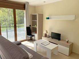 salon-1-apartamentos-llorts-ordino-3000llorts-estacion-vallnord.jpg