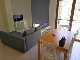 salon-comedor-apartamentos-llorts-ordino-3000-llorts-estacion-vallnord.jpg