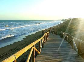 Guardamar del segura Costa Blanca  Spain