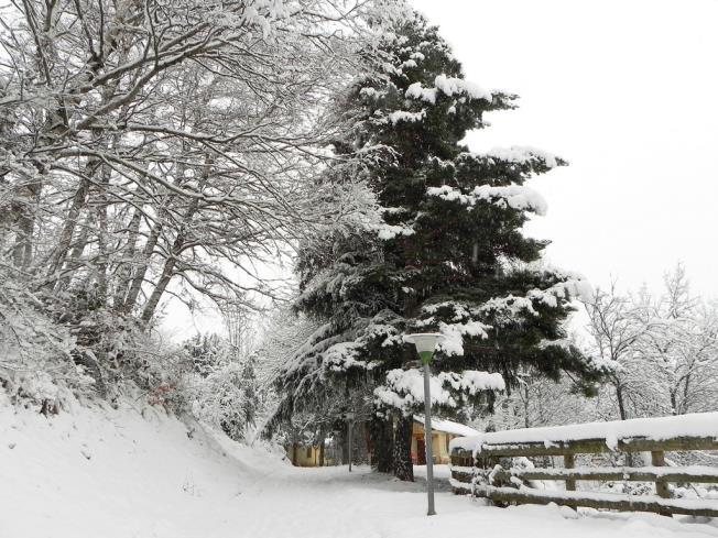 fachada-invierno_11-complejo-bubal-formigal-3000biescas-pirineo-aragones.jpg