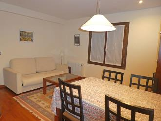 salon-apartamentos-villanua-3000-villanua-pirineo-aragones.jpg