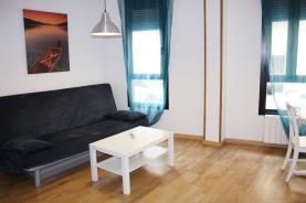 Salón1-Apartamentos-Rodriguez-de-Córdoba-3000-ZARAGOZA-Zaragoza.jpg