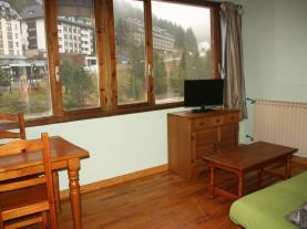 Salón-comedor-Apartamentos-Candanchu-3000-CANDANCHU-Pirineo-Aragonés.jpg