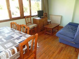 salon_2-apartamentos-candanchu-3000candanchu-pirineo-aragones.jpg