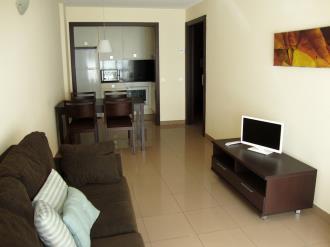 salon-comedor_9-apartamentos-canillo-pie-de-pistas-3000canillo-estacion-grandvalira.jpg