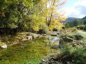 Naturaleza Tramacastilla Tramacastilla de tena Pirineo Aragonés España