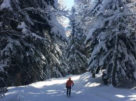 Somport esquí Villanua Pirineo Aragonés España