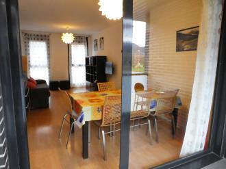 salon-comedor_10-apartamentos-jaca-3000-jaca-pirineo-aragones.jpg