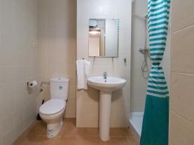 bano-apartamentos-gavin-biescas-3000-biescas-pirineo-aragones.jpg