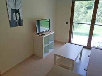 salon_1-apartamentos-gavin-biescas-3000biescas-pirineo-aragones.jpg