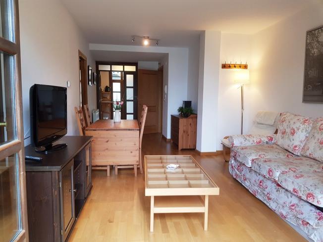 salon_6-apartamentos-biescas-3000biescas-pirineo-aragones.jpg