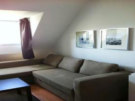 Salón3-Apartamentos-Sierra-Nevada-3000-MONACHIL-Sierra-Nevada.jpg