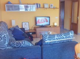 salon_2-apartamentos-vidal-3000cambrils-costa-dorada.jpg