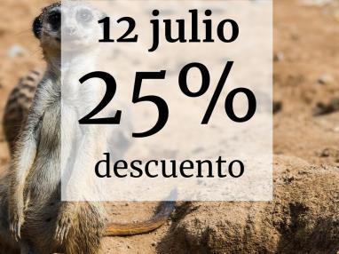 Descuento de verano:25%-4